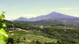 Vignobles du Ventoux et Mont Ventoux